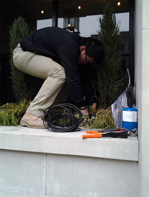 one of our Parkland WA sprinkler repair experts is installing a drip system