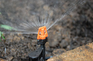 our Parkland sprinkler repair contractors can install micro spray heads
